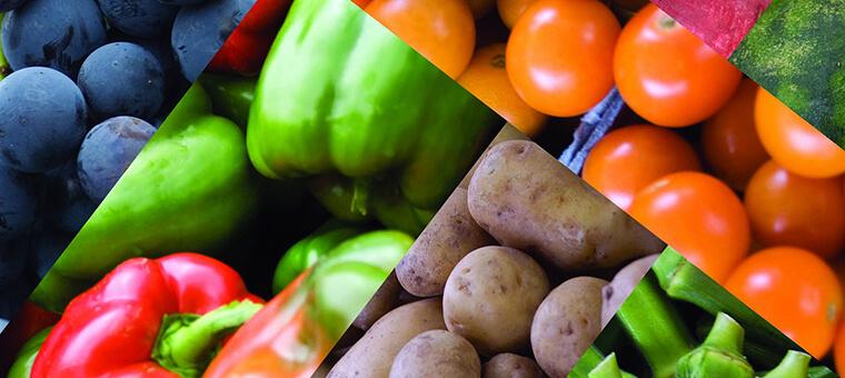7-typen-von-vegetariern