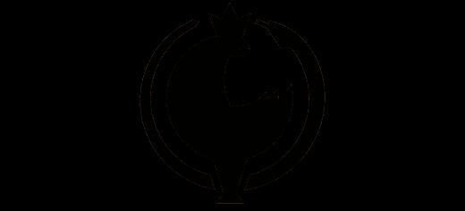 nils-snake_logo_trans_black